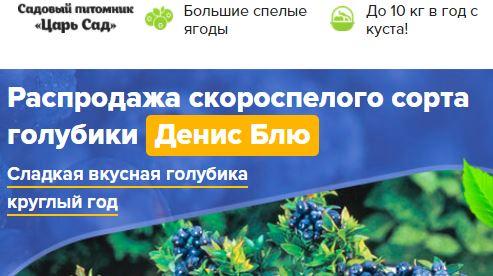 купить Где в Томске купить Денис Блю